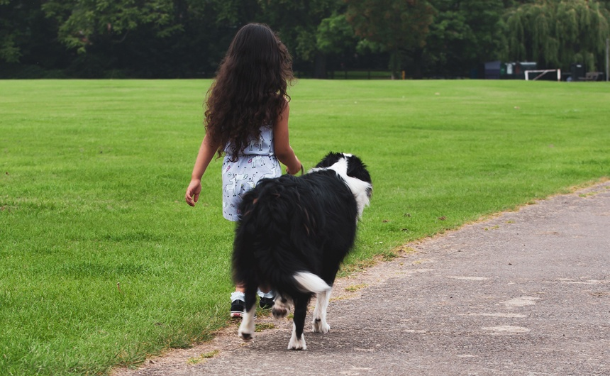 You are currently viewing How Family Pets Can Benefit Your Children