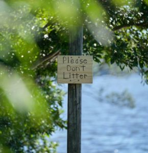 Read more about the article Little Litterbugs: Teach Your Child to be Responsible